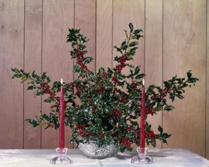 holly centerpiece with candles - Christmas Holly Decorations